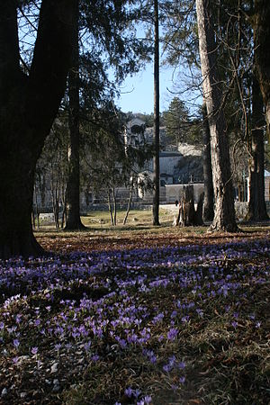 King Nikola's Palace - Royal garden, view to Cetinje monastery