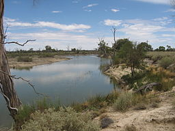 Rufus River, New South Wales.JPG
