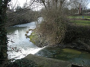 River Swift -  The Swift joins the Avon in Rugby