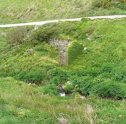 Ruin, Tintagel - geograph.org.uk - 1384175