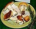 Russula mustelina 1.jpg