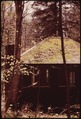 SUMMER COTTAGE WITH MOSS-GROWN ROOF AND STONE CHIMNEY - NARA - 554436.tif