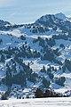Saanenmöser - Plani - Rellerli - panoramio (27).jpg