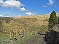 Salter Rake Gate, Pennine Bridleway - geograph.org.uk - 1227874.jpg