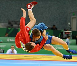 Sambo at the 2015 European Games.jpg