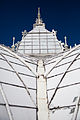 San Francisco Conservatory of Flowers-51.jpg