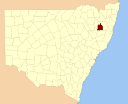 Sandon NSW