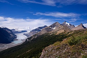 Saskatchewan Glacier - Image: Saskatchewan Glacier Alberta Canada