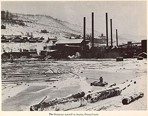 Charles W. Goodyear - The Goodyear sawmill in Austin, Pennsylvania