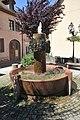 Schirmeck-Brunnen-1-CTH.jpg