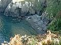 Seal pups, late September - geograph.org.uk - 980591.jpg