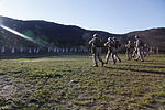 Security Force Marines conduct trilateral exercise during Lisa Azul 150310-M-XZ244-033.jpg