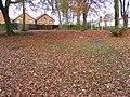 Sedgley Leaves - geograph.org.uk - 1580611.jpg