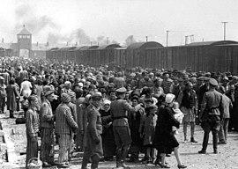 Selection on the ramp at Auschwitz-Birkenau, 1944 (Auschwitz Album) 1b