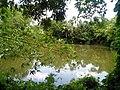 Shaheb Bari Pond.jpg