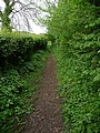 Shalbourne - Path - geograph.org.uk - 1450616.jpg