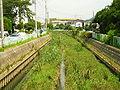 ShibaKawa2005-8.jpg