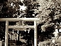 Shinto shrine in Hakodate (7662427136).jpg