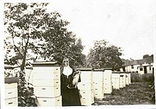 Sister Ann Joseph Morris - Keeper Of The Bees.jpg