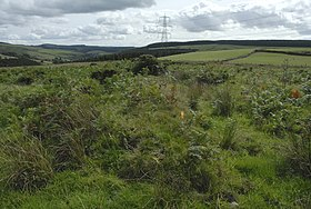 Site of Roman Camp at Blaencwmbach - geograph.org.uk - 227959.jpg
