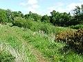 Skelmorlie Reservoir - geograph.org.uk - 441710.jpg