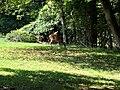 Sligo Creek Trail Kemp Mill 23.jpg