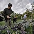 Snoeiwerkzaamheden in tuin - Ambt Delden - 20389116 - RCE.jpg