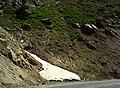 Snow at Summer - Shemshak - Dizin Road - panoramio.jpg