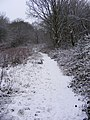 Snowy path in Coppice - geograph.org.uk - 1650745.jpg