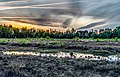 Sonnenuntergang Duvenstedter Brook.jpg