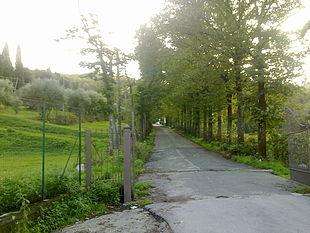 Viale d'ingresso dello stabilimento della sorgente Fontepatri