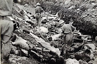 File:Chinese Casualty Korean War.jpg - Wikimedia Commons