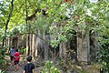 South Park Street Cemetery Kolkata (37610061574).jpg