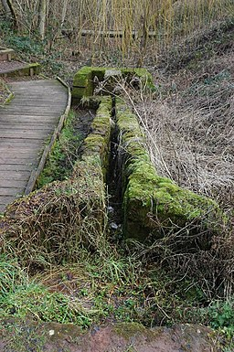 St Kenelm's Spring, Clent - geograph.org.uk - 673180