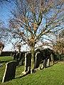 St Peter's church - churchyard - geograph.org.uk - 691633.jpg