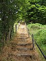 Steep steps to the viewpoint - geograph.org.uk - 1965411.jpg