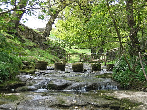 Stepping Stones - geograph.org.uk - 1723923