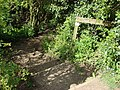 Steps from Brundon Lane to The Valley Walk - geograph.org.uk - 785561.jpg