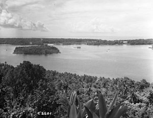34th Battalion (New Zealand) - During the Battle of the Treasury Islands, the 34th Battalion was tasked with securing on Stirling Island, seen here in the distance, while the 29th and 36th Battalions landed on Mono Island, the southern coast of which is in the immediate foreground
