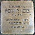 Stolperstein Gießen Neuen Bäue 23 Werner Herz.JPG