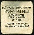 Stolpersteine Köln Maria Siegfried Heimbacher Straße 13 11.jpg