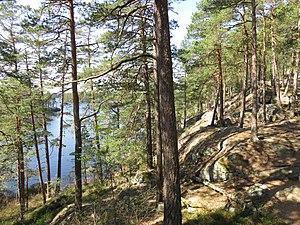 Stora Trehörningen Tivedens nationalpark.jpg