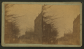 Street view, Washington, Ga, from Robert N. Dennis collection of stereoscopic views.png