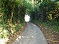 Sunken lane crossing the Burial path near Scowles - geograph.org.uk - 589988.jpg