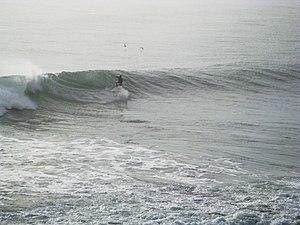 Surfer chi è