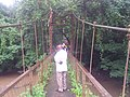 Suspension Bridge over Osun River.jpg