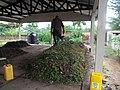 Sustainable sanitation (14728274440).jpg