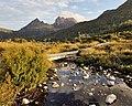 Swampy area near Cradle Mountain, Tas.jpg