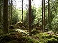 Sweden0504 4.JPG