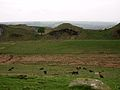 Sycamore Gap, distant view 2.jpg
